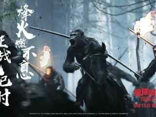猩球崛起3终极之战电影海报图片