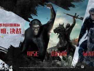猩球崛起3电影海报