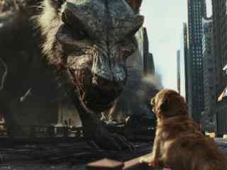 狂暴巨兽巨狼暴走芝加哥市区吓坏大金毛剧照