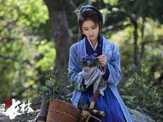 《琅琊榜之风起长林》高清壁纸图片