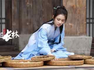 《琅琊榜之风起长林》剧照图片高清壁纸
