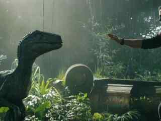 侏罗纪世界2布鲁欧文再次相遇剧照