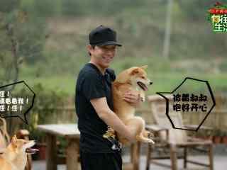 向往的生活第二季黄渤抱柴犬剧照图片
