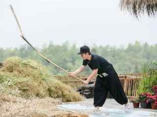 向往的生活第二季黄渤做农活剧照图片