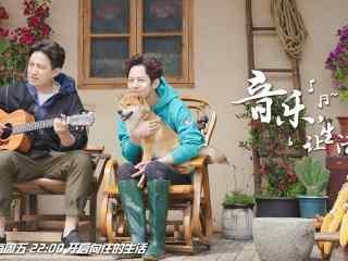 向往的生活第二季黄磊弹吉他何炅撸狗剧照图片