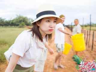 江疏影《花儿与少年》第三季剧照图片