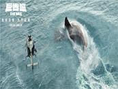 《巨齿鲨》直升机发现巨齿鲨出现在浅海剧照