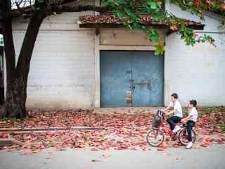 老挝琅勃拉邦街道桌面壁纸