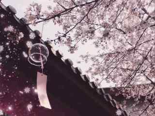 樱花水下的日式风铃桌面壁纸