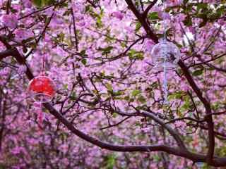 桃花树下的风铃桌面壁纸