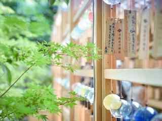 唯美小清新日式风铃桌面壁纸
