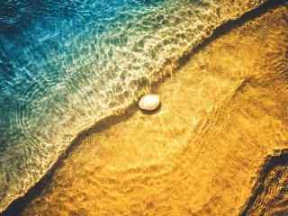 海水下的小贝壳桌面壁纸