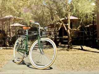 简约唯美的草坪上的单车桌面壁纸