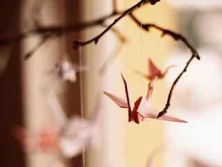 小清新之千纸鹤系列摄影