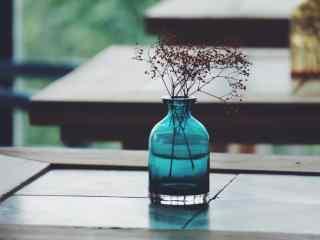 咖啡馆小清新满天星盆栽桌面壁纸