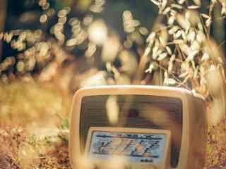 怀念旧时光复古旧物收音机高清壁纸