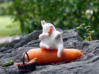 吃胡萝卜的毛毡小兔子桌面壁纸