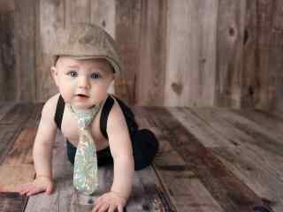 萌萌哒穿西装的可爱小宝宝桌面壁纸