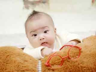 趴在大熊上的可爱小宝宝桌面壁纸