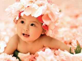 花仙子小宝宝可爱写真桌面壁纸