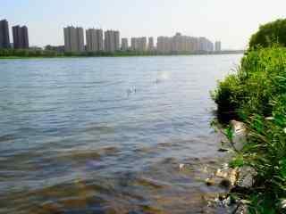 春日清新辽河风景高清壁纸
