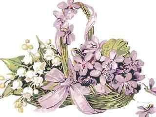 唯美手绘紫罗兰花朵图片