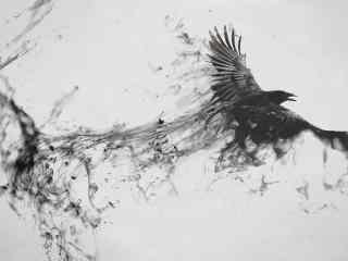 抽象画手绘老鹰图片桌面壁纸