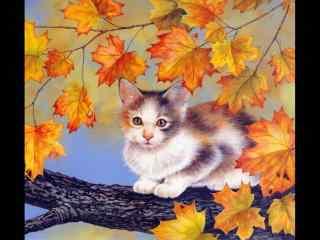 逼真猫咪和枫叶手