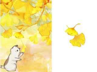 超萌小黄猫和银杏