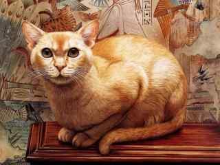 高清黄色猫咪手绘壁纸