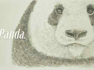 手绘彩铅简约熊猫桌面壁纸