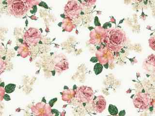 经典手绘玫瑰桌面