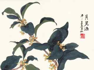 手绘桂花图片桌面壁纸