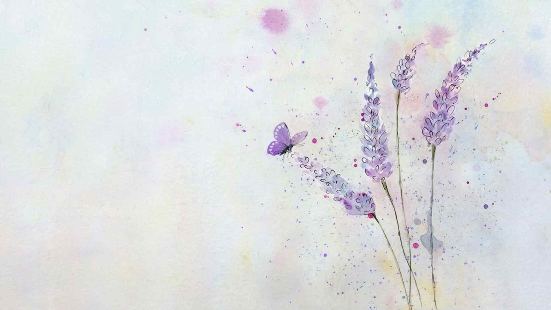 紫色薰衣草手绘插