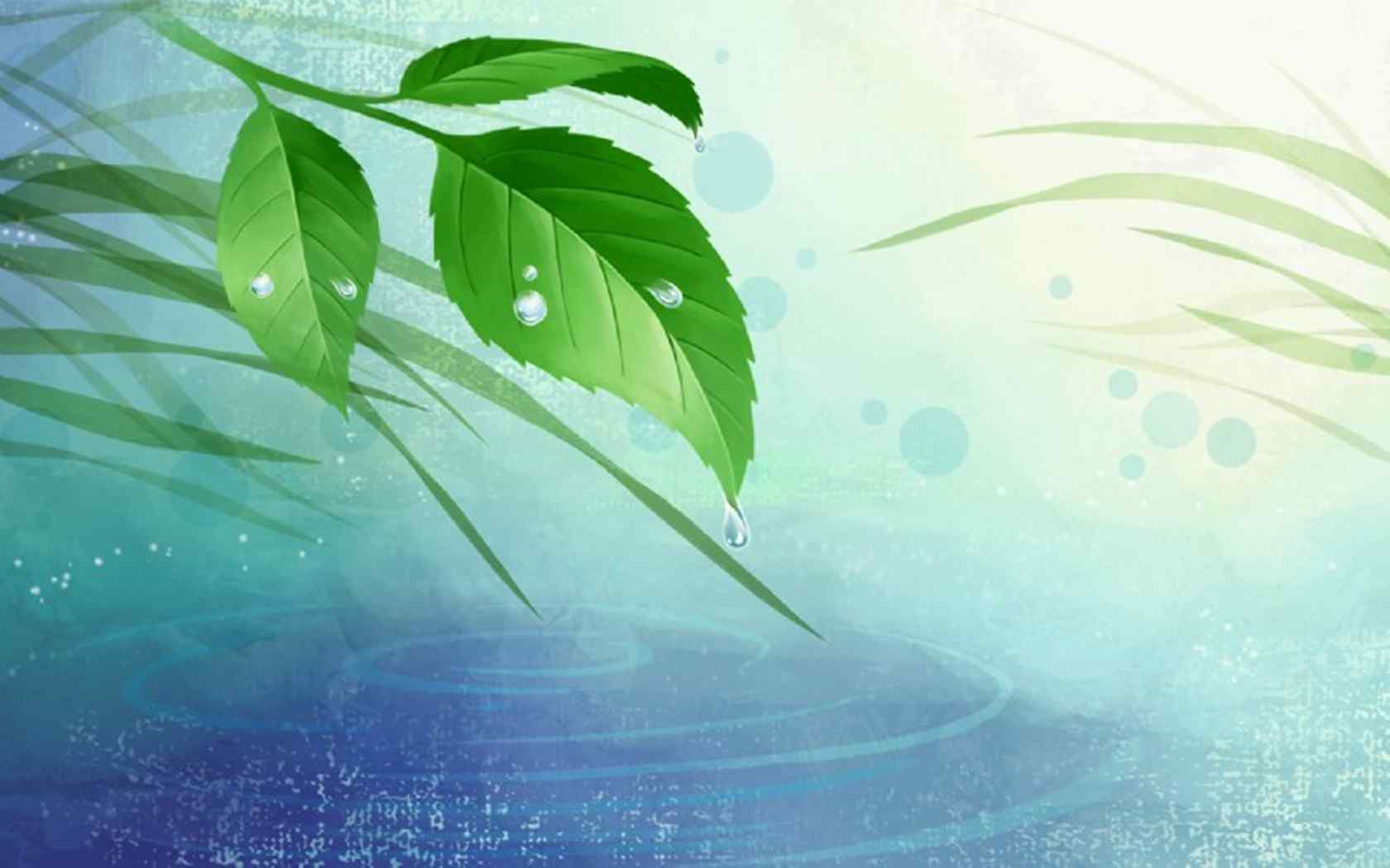 唯美风格植物壁纸
