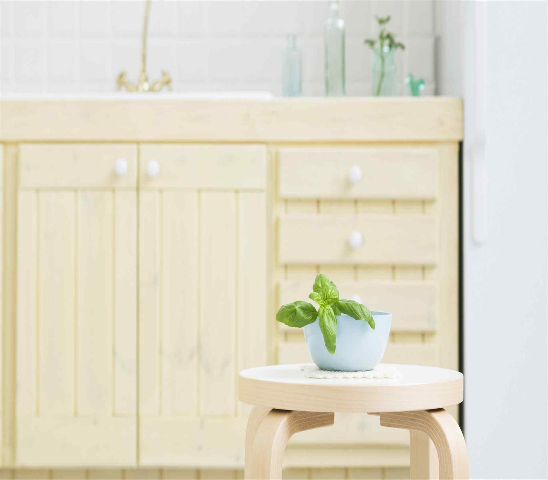室内小清新护眼小盆栽风景桌面壁纸