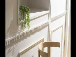 室内书桌上护眼盆栽风景桌面壁纸