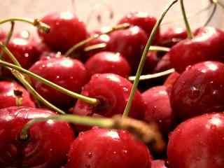 带长柄色泽鲜艳的红樱桃高清桌面壁纸