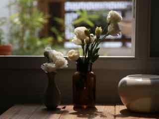 春日温馨花朵桌面壁纸