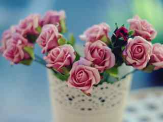 文艺盆栽花朵高清