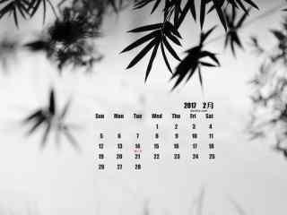 黑白摄影之竹叶影