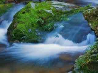 山水瀑布上的青苔桌面壁纸