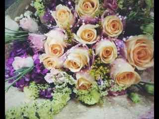 妇女节—香槟玫瑰花束桌面壁纸