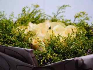 妇女节—香槟玫瑰捧花桌面壁纸