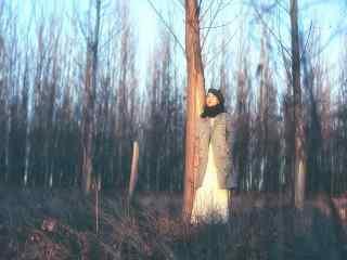植树节—树林中的