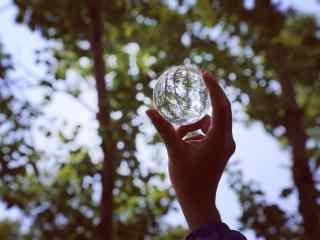 植树节—玻璃球中