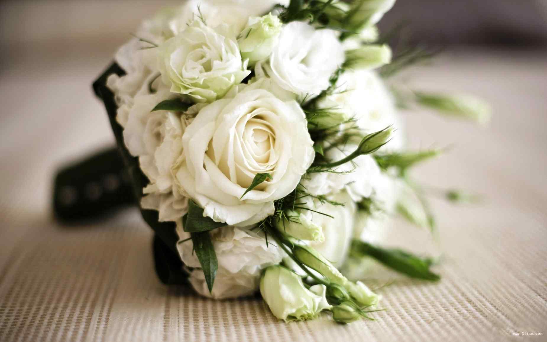 白色情人节-一束白玫瑰高清壁纸