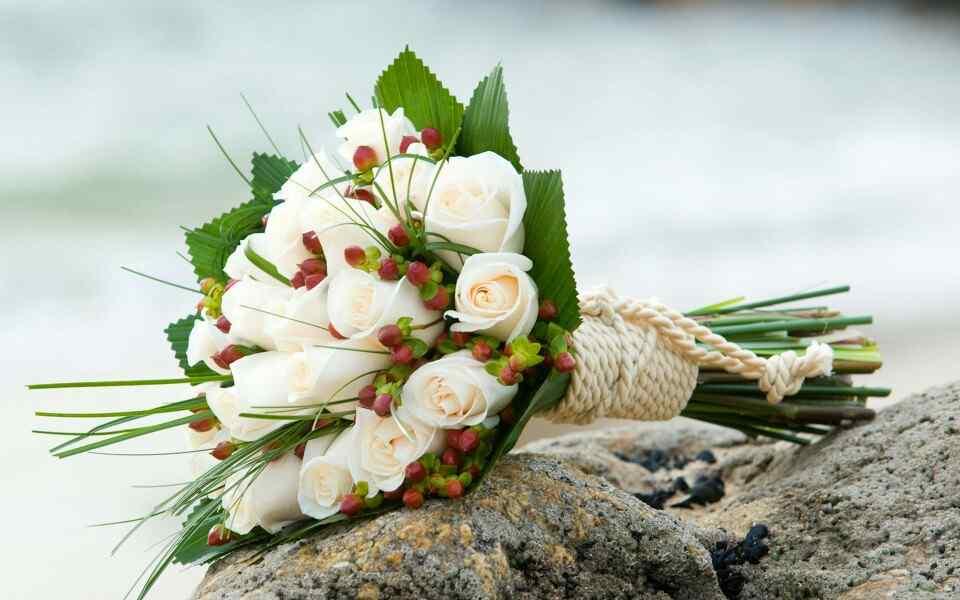 白色情人节-唯美的一束白玫瑰