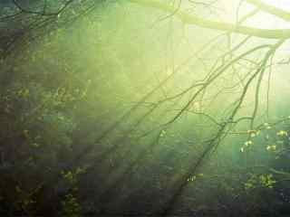 清晨的光晕照亮了