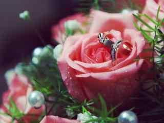 小清新玫瑰摄影壁